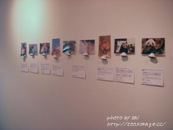 Congratulations Handmade展&Postcard展